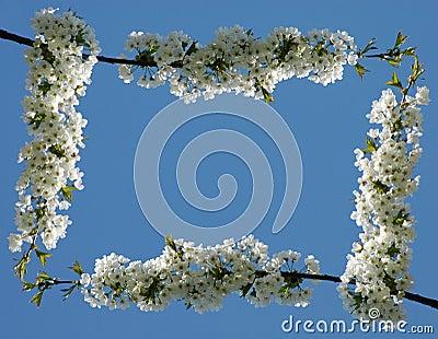 Flower frame #01 (normal)