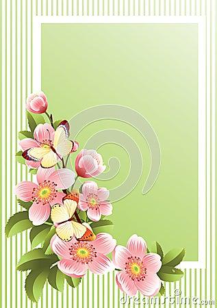 Free Flower Frame Stock Images - 4886244