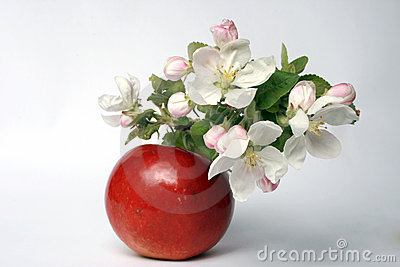 Flower and fruit