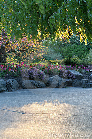 Free Flower Garden Stock Image - 753861