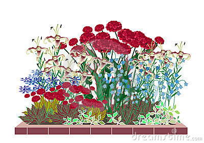 Flower garden with roses and lilies