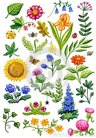 Free Flower Garden Watercolor Royalty Free Stock Images - 56539539