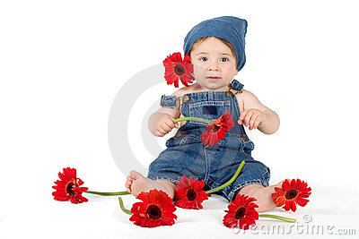 Flower Girl - baby amongst fresh gerberas