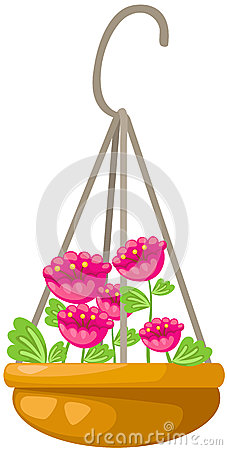 Flower in a hanging pot