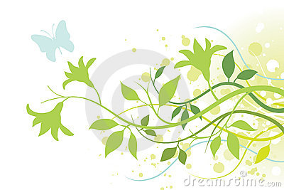 Flower, Leaves and a Butterfly
