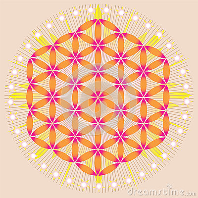 Flower of life in shining space