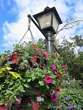 Flower Light Post