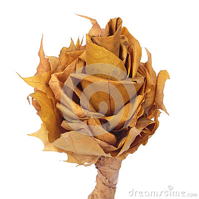Flower made of autumn leaves