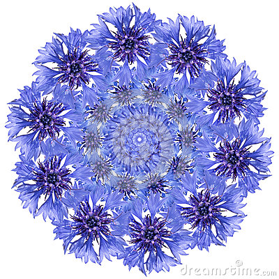 Free Flower Mandala. Cornflower Blue Circular Design. Royalty Free Stock Photo - 83567705