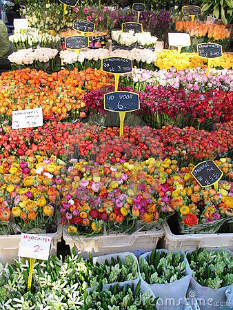 Free Flower Market Royalty Free Stock Image - 2103396