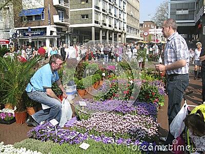 Flower market in Groningen Editorial Photography