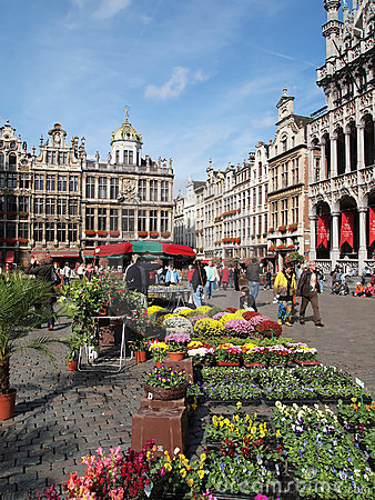 Flower market middle square Grand Place Brussels Editorial Photography