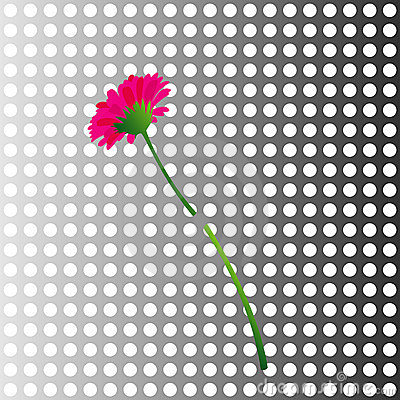 Flower in a metal wall