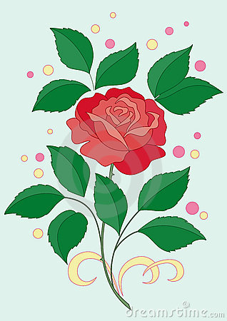 Free Flower Of A Rose And Confetti Royalty Free Stock Photography - 14509437