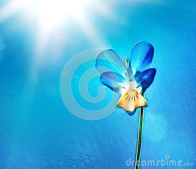Flower over blue