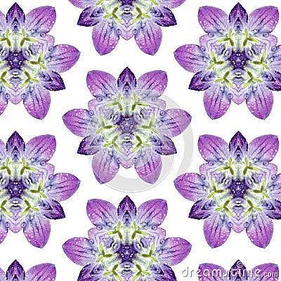 Flower Pattern F