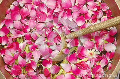 Flower petals in water with golden scoop