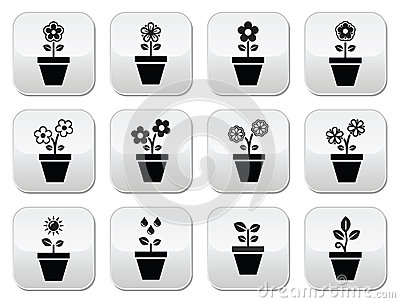 Flower, plant in pot  icons set
