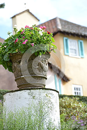 Flower pot - Portmerion Village in Wales