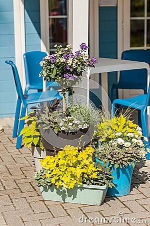 Free Flower Pots Royalty Free Stock Photos - 57196928
