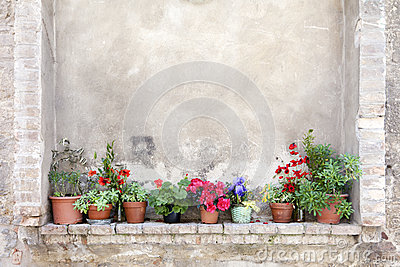 Flower pots on an ancient wall in Tuscany