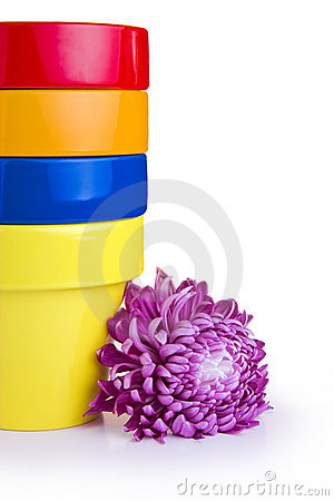Free Flower Pots And Flower Stock Images - 6622674