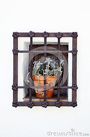 Flower-prisoner