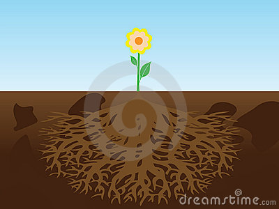 Flower with root