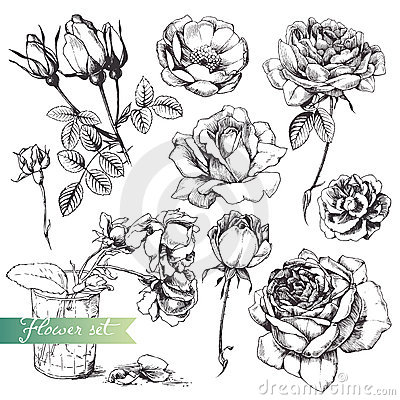 Flower set.