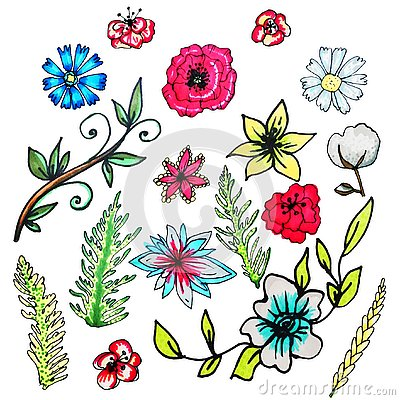 Free Flower Set Drawn By Hand.Isolated Flowers.Liliya, Cornflower, Chamomile, Poppy, Cotton, Green Branches Royalty Free Stock Photography - 144993457
