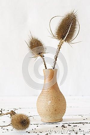 Free Flower Vase Stock Photos - 27719313