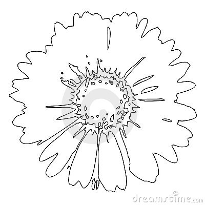Free Flower (vector) Royalty Free Stock Images - 5471729