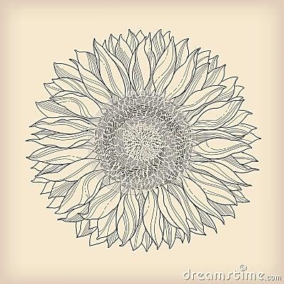 Free Flower Vintage Card Stock Photos - 25390853