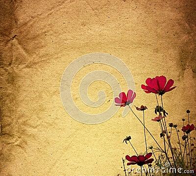Flower vintage paper