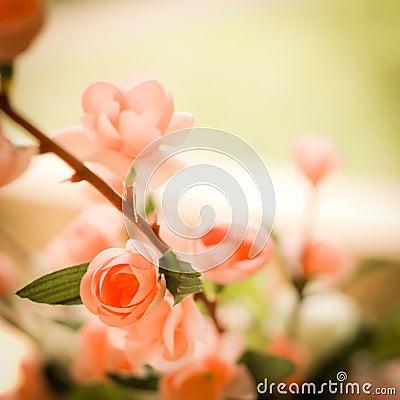 Flower in vintage style