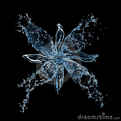 Flower from water splashes on black