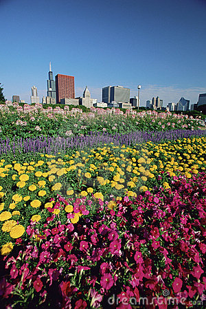Flowerbeds in Grant Park Editorial Stock Image