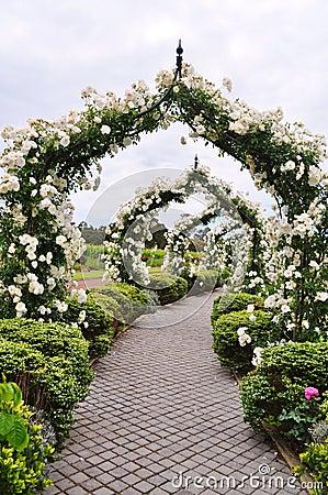 Flowered Arc