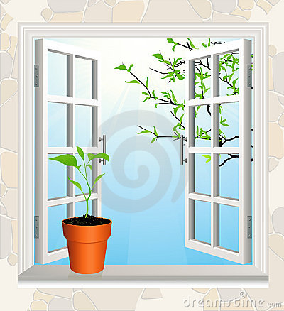 Flowerpot on window sill
