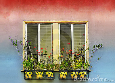 Flowerpots and window