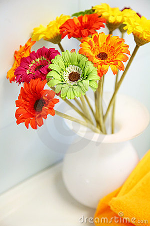 Free Flowers Stock Photography - 19639562