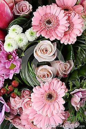 Free Flowers Stock Photo - 4223870