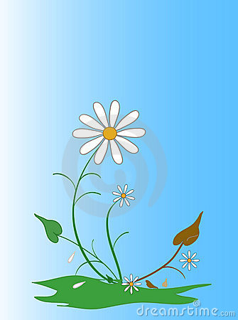 Free Flowers Stock Photos - 8989573