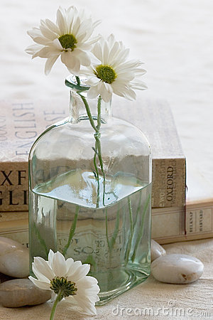 Free Flowers And Books Stock Photo - 6101060