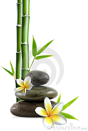 Free Flowers And Stones Royalty Free Stock Photo - 13453285