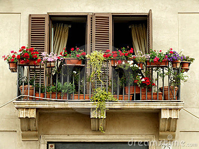 Flowers on a balcony