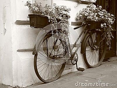Flowers at bike, retro style