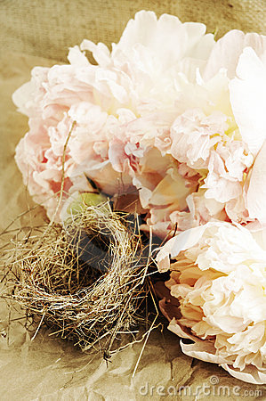 Flowers and bird s nest