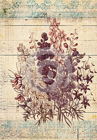 Free Flowers Botanical Vintage Style Wall Art With Textured Background Royalty Free Stock Photography - 30808957