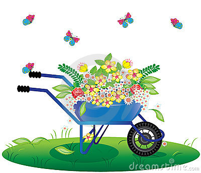 Flowers bouquet in wheelbarrow